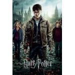 1art1 54728 Poster Harry Potter 7 Partie 2 L'Affrontement Final 91 x 61 cm