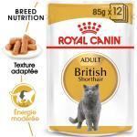 24x85g British Shorthair Royal Canin Breed - Sachets et Boîtes pour Chat