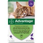Advantage 80 Solution Antipuce Chat Lapin +4kg 6 pipettes