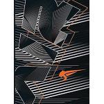 AIRNESS Alaric Agenda Scolaire 2021 ‐ 2022 Journalier Format 12x17cm Couverture Souple Noire, Orange et Grise