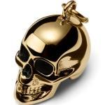 Amulette tête de mort en acier doré