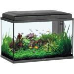 Aquarium Aqua Start 55 Led Noir - Aquatlantis