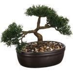 Bonsai Pot Ceramique H.23cm - Paris Prix