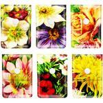 Cendrier de poche illustration Flowers anti odeur format pochette avec doublure ignifuge et fermeture à bouton modèle au choix (Lot de 6 cendriers assortis)