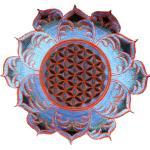 Fleur De Vie Blanche Mandala Sacré Géométrie Psy Patch Sacrée
