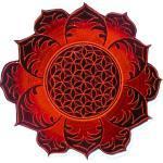 Fleur De Vie Deepred Mandala Sacré Géométrie Psy Patch La Sacrée