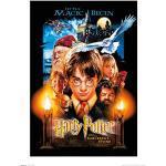 grupo Erik Print Harry Potter and the Sorcerer's Stone, multicolore, 30x 40cm