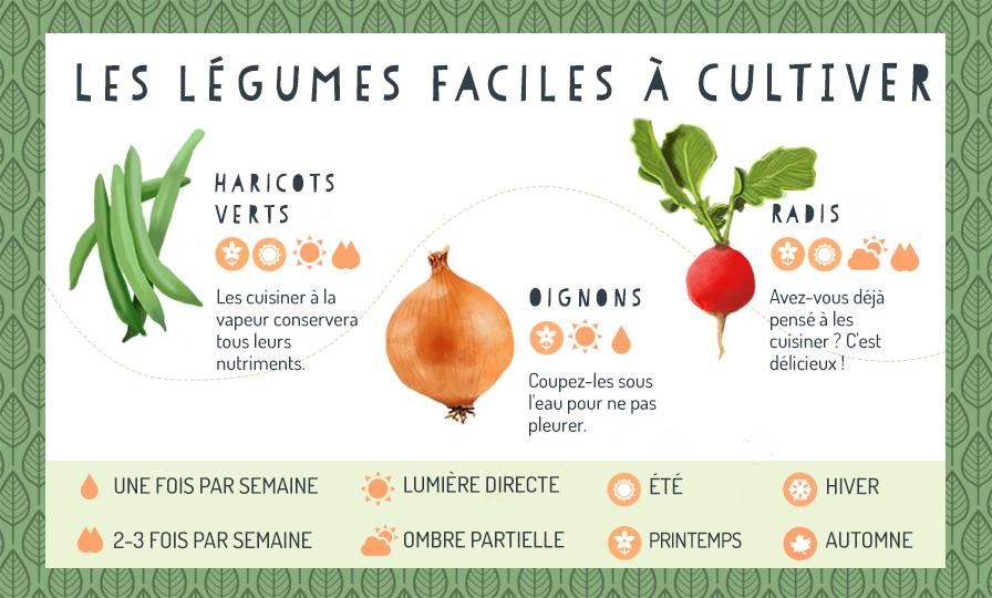 Legumes faciles