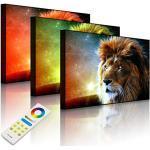 Lightbox multicolore   Tableau avec éclairage LED   Lion abstrait Art   100 x 70 cm   Avant lumineux