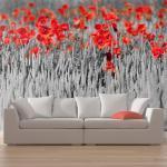 Papier Peint - Coquelicots Rouge Sur Champ Noir Et Blanc - Décoration, Image, Art | 450x270 Cm | Xxl - Grand Format -
