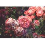 Papier peint panoramique - Roses Antiques XL