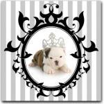 Tableaux multicolores en pin à motif chiens baroques & rococo