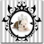 Tableaux en pin à motif chiens baroques & rococo