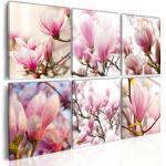 Tableau Imprimé Magnolias dans le Sud - Paris Prix