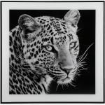 Tableau Noir et Blanc TIGER