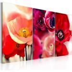 Tableau toile de décoration motif fleur Coquelicots 120x80cm DEC110386/2