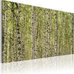 Tableau toile de décoration motif Forêt de bouleaux 120x80cm DEC110535