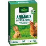 vilmorin semences de prairie pour lapin et poule