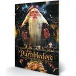 Wizarding World SW11032P Harry Potter (Dumbledore) Impression sur Bois, Multicolore, 40 x 59 cm