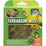 Zoomed - Mousse Terrarium Moss Pour Terrarium - S
